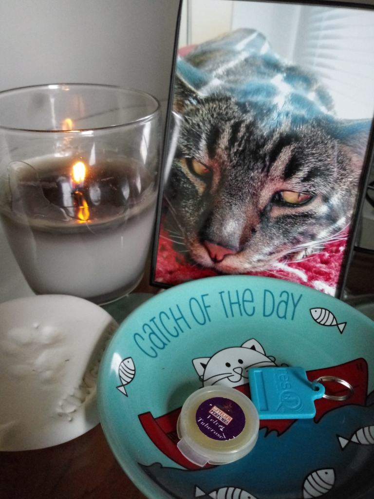 A framed photograph of a striped cat relaxing, next to a lit candle, a paw print in clay and a cat food dish holding a sample of Velvet Tuberose solid perfume