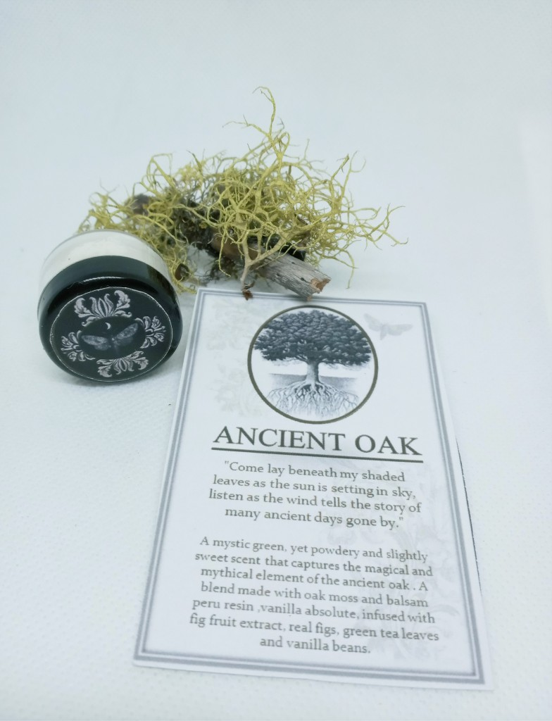 Ancient Oak next to its product card, adorned with a small moss-covered branch